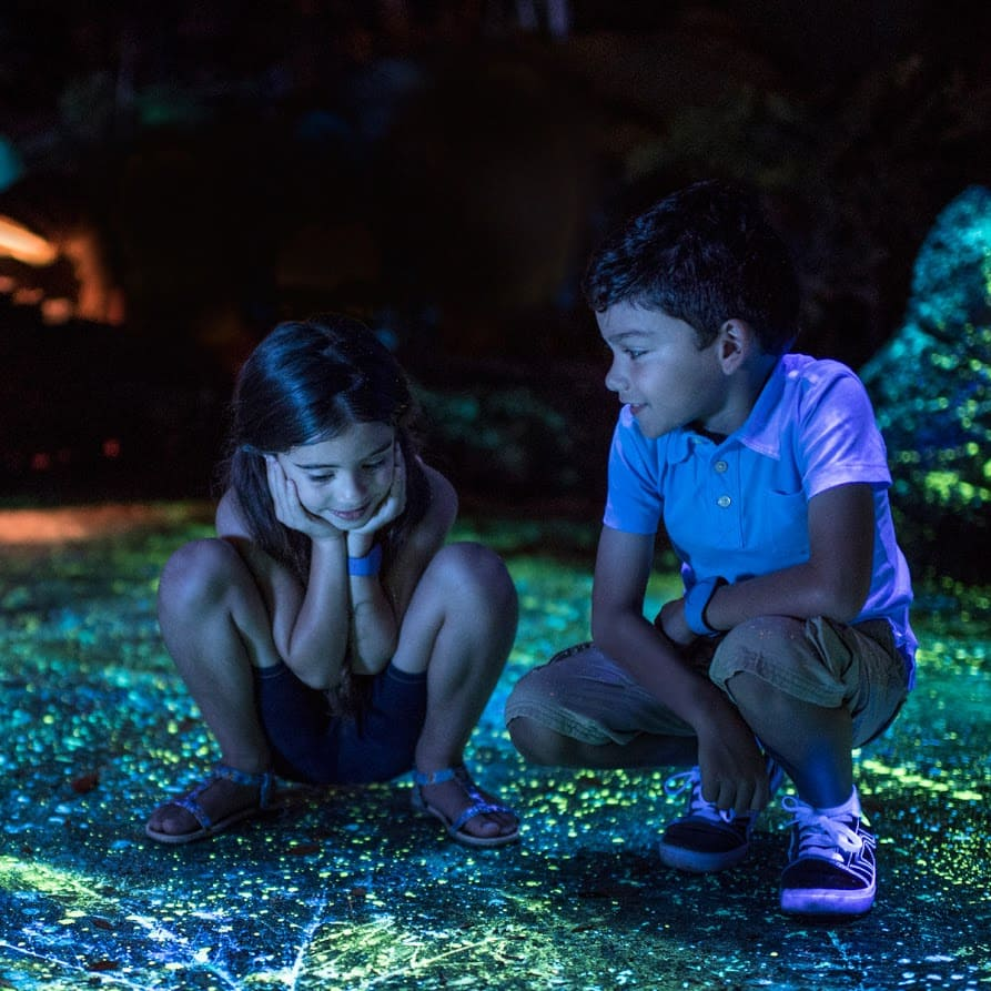 A brother and sister marveling in wonder at the bioluminescence of Pandora – The World of Avatar